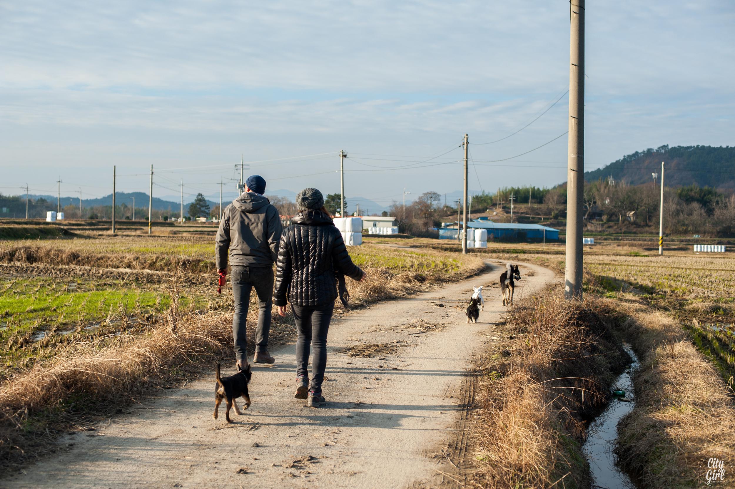 Photographer in Korea City Girl Searching Damyang Gwangju Korea-25.jpg