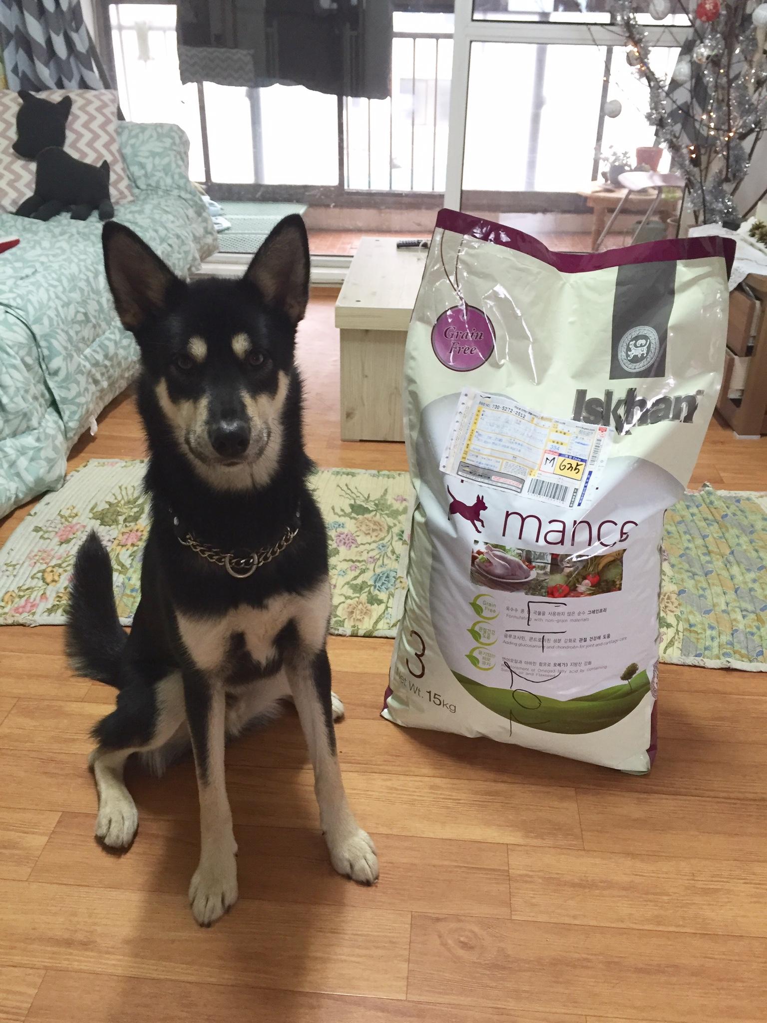 Iskhan grain free dog food korea