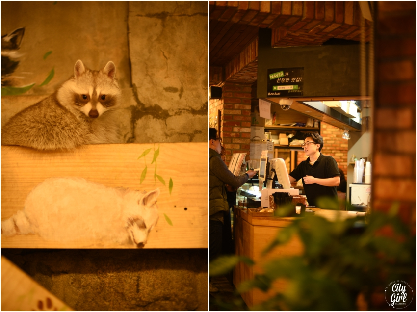 Blind Alley Racoon Cafe Seoul Things to do in Seoul Korea (35 of 43).jpg