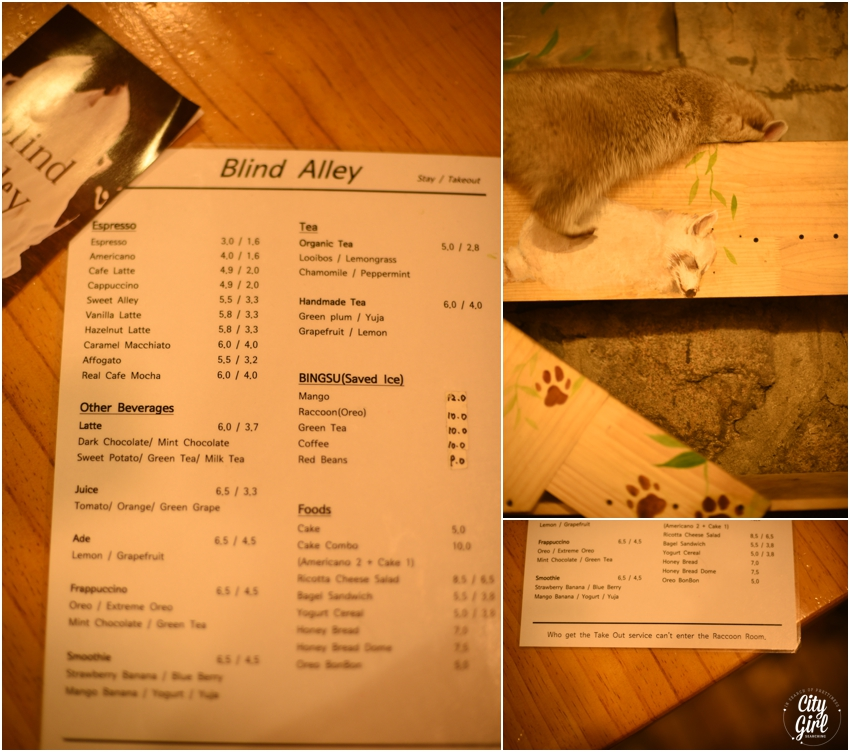 Blind Alley Racoon Cafe Seoul Things to do in Seoul Korea (38 of 43).jpg