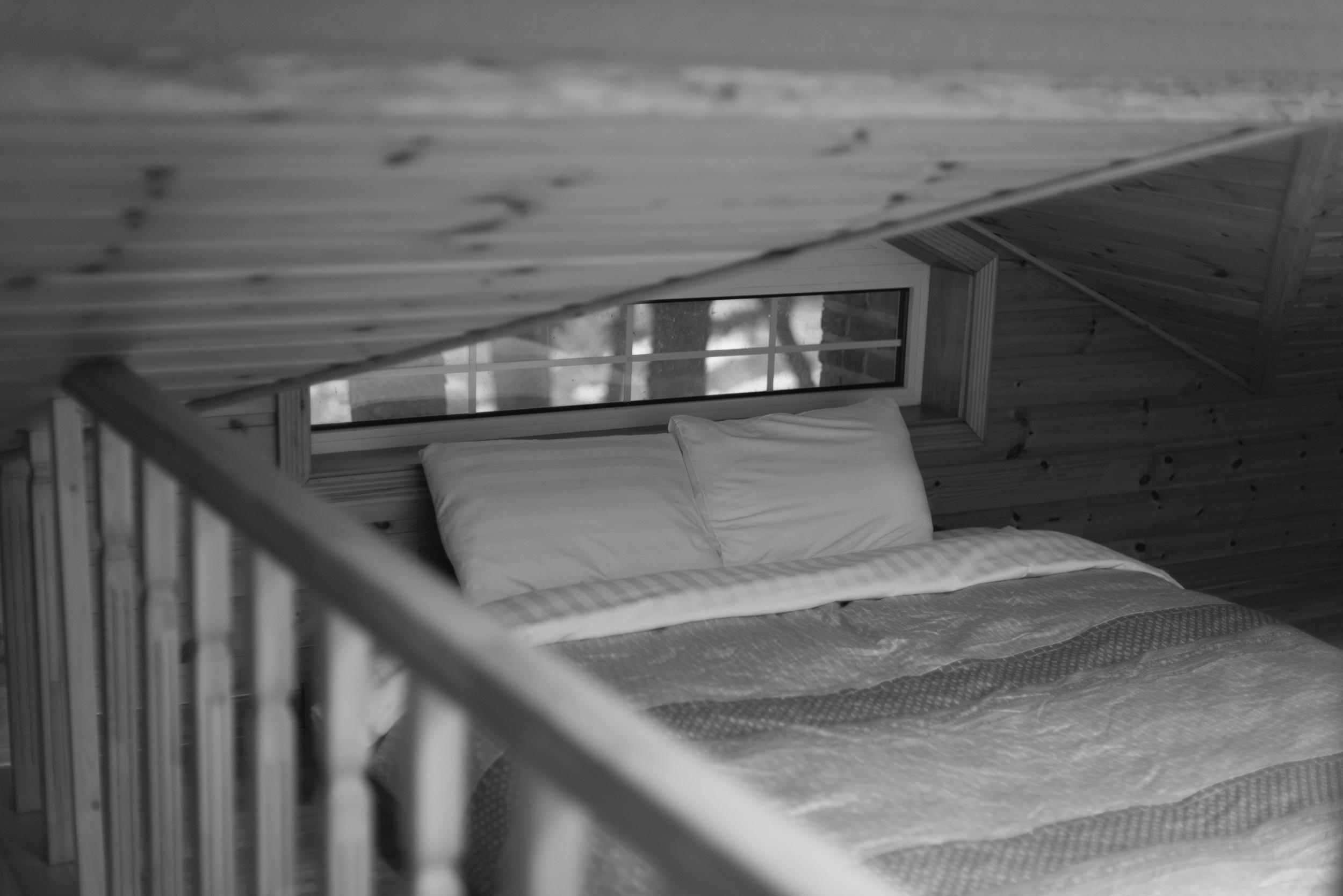 ArtInIslandPyeongChangDogFriendly Wooden Cabin Korea (24 of 258).JPG