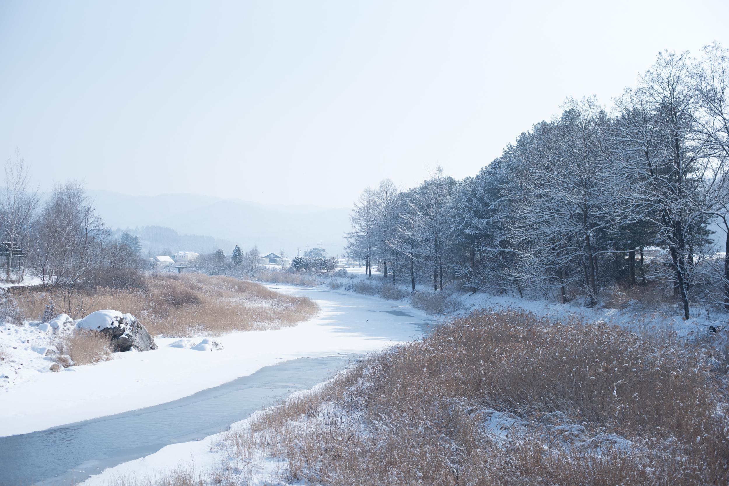 ArtInIslandPyeongChangDogFriendly Wooden Cabin Korea (200 of 258).JPG