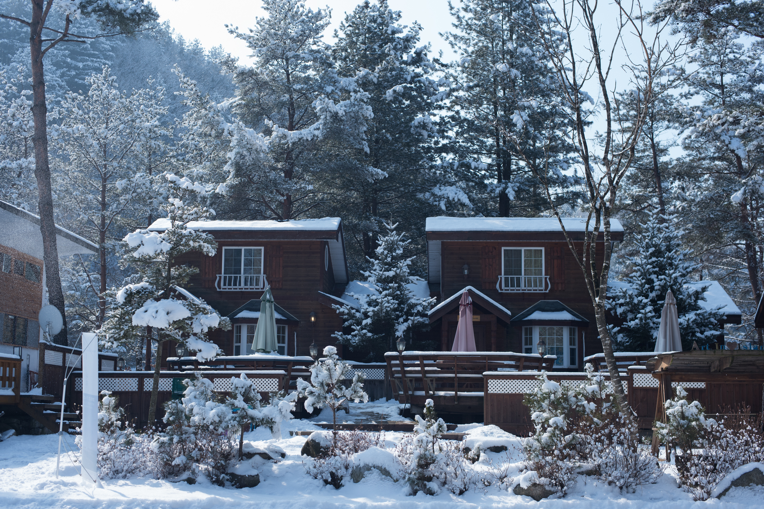 ArtInIslandPyeongChangDogFriendly Wooden Cabin Korea (213 of 258).JPG