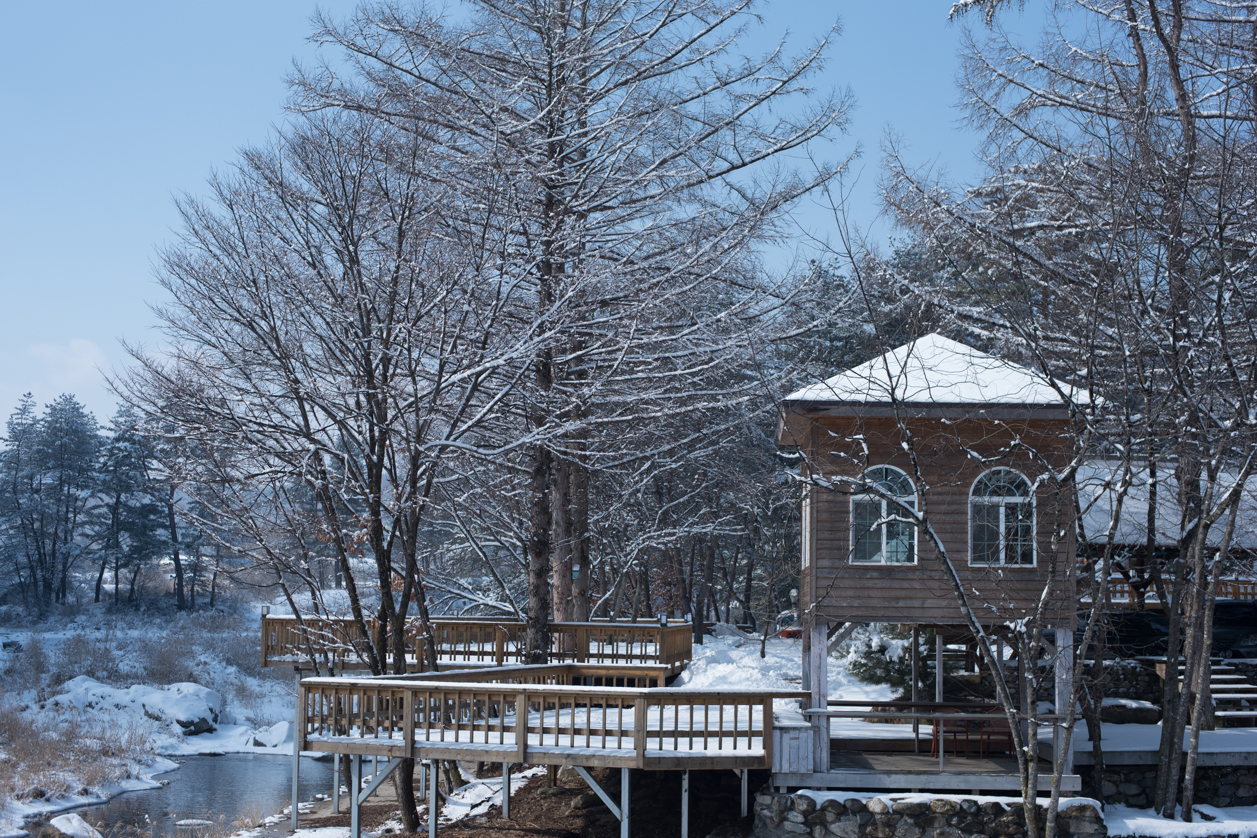 ArtInIslandPyeongChangDogFriendly Wooden Cabin Korea (232 of 258).JPG