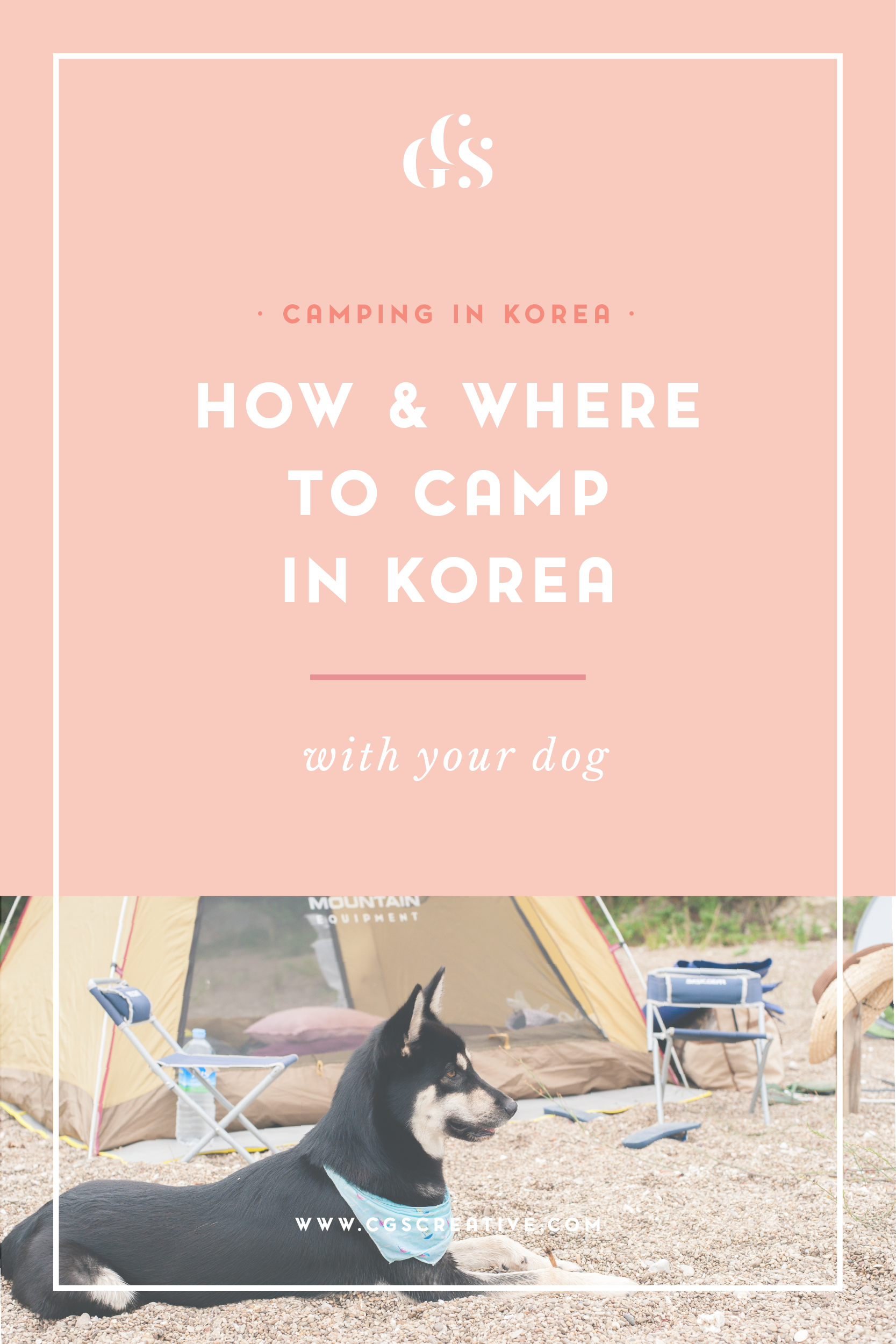 Camping With a Dog In Korea - where to camp with a dog in Korea