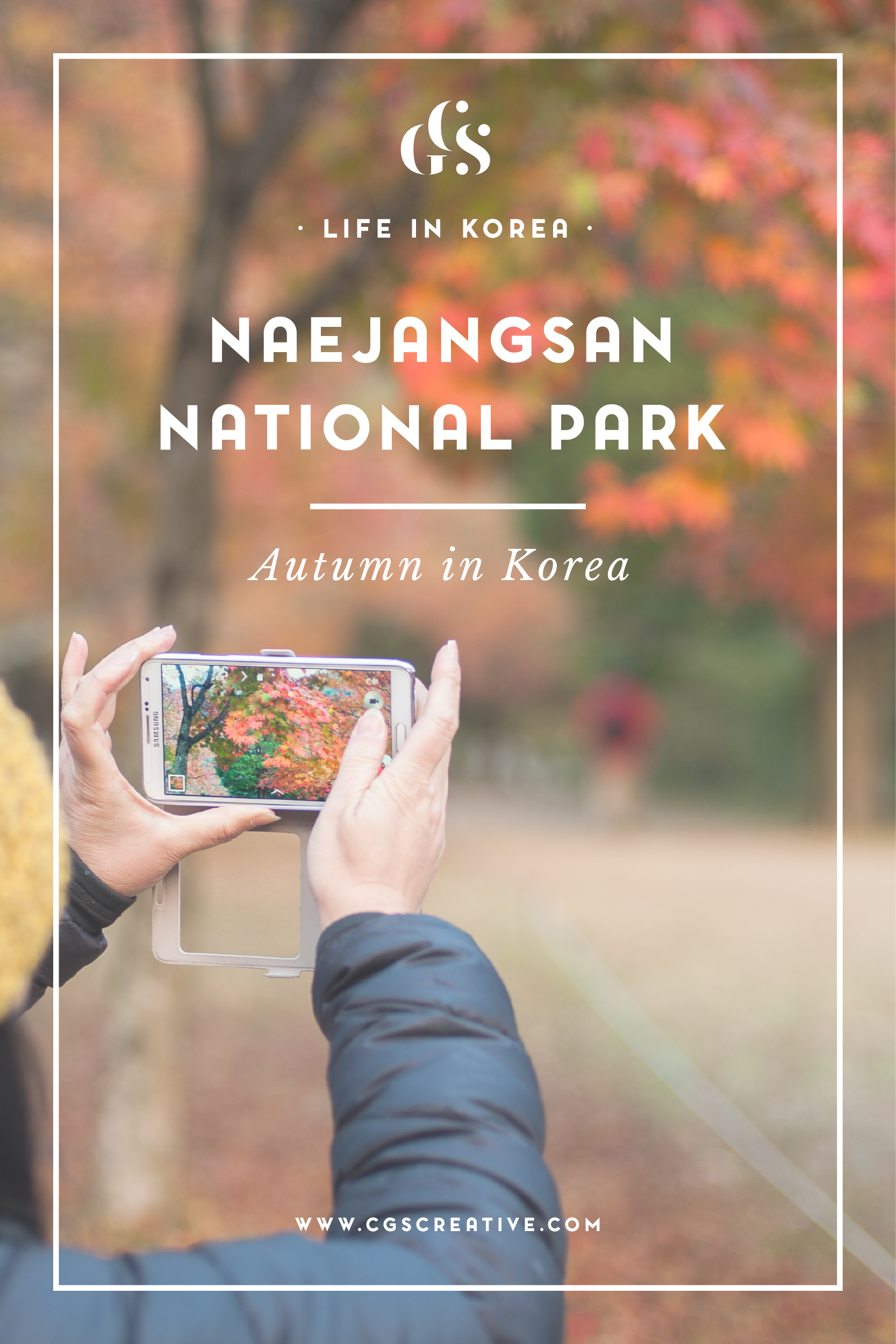 Naejangsan where to see autumn fall leaves in korea