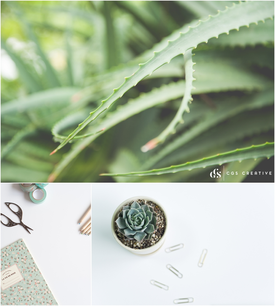 Stock With Heart Stock Photo Membership Library for creatives_0275.jpg