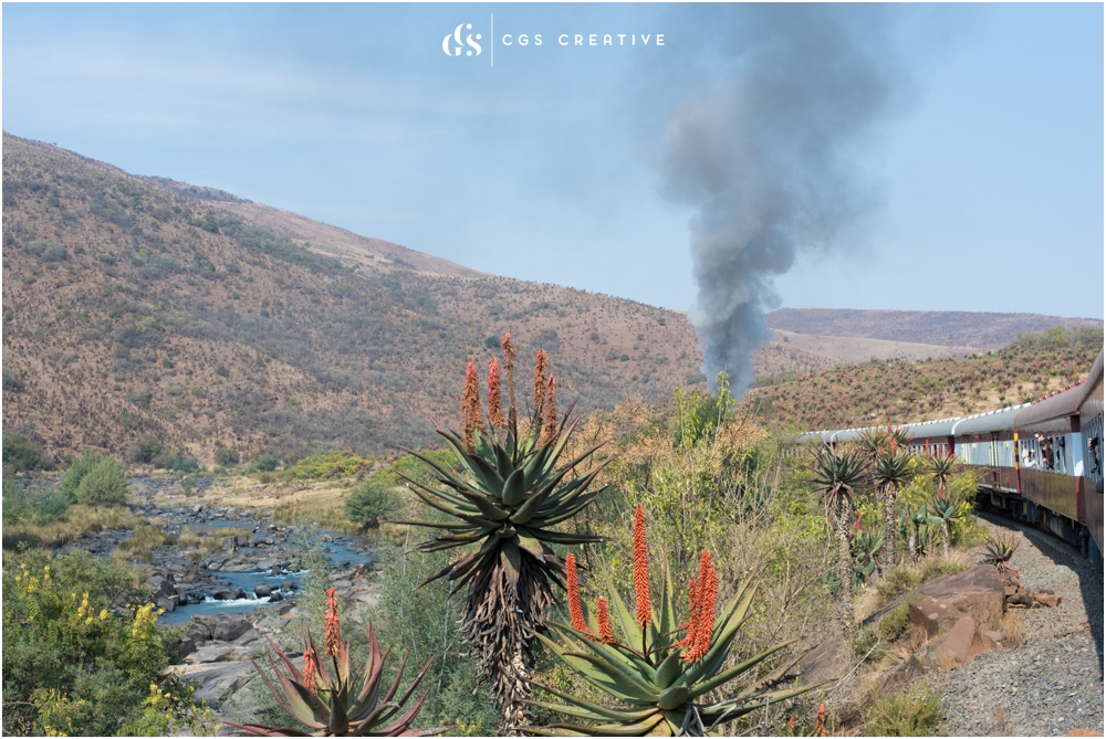 Creighton Steam Train Trip through Aloes by Roxy Hutton CGScreative (64 of 137).jpg