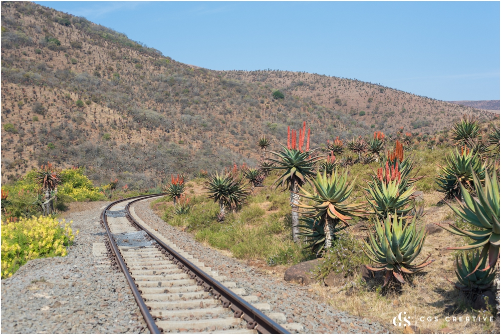 Creighton Steam Train Trip through Aloes by Roxy Hutton CGScreative (109 of 137).jpg