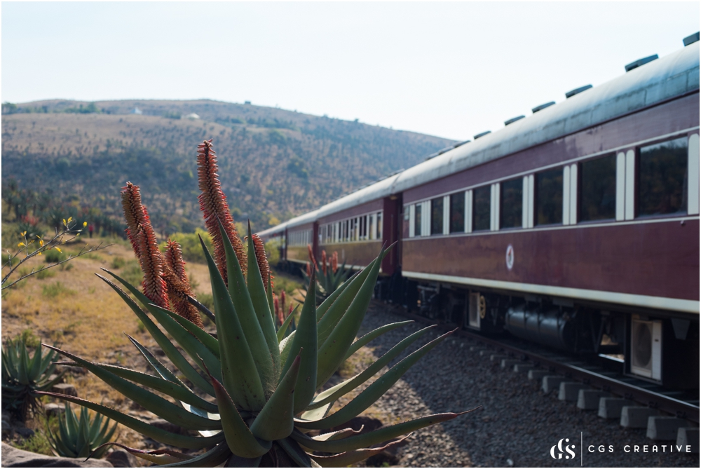 Creighton Steam Train Trip through Aloes by Roxy Hutton CGScreative (121 of 137).jpg