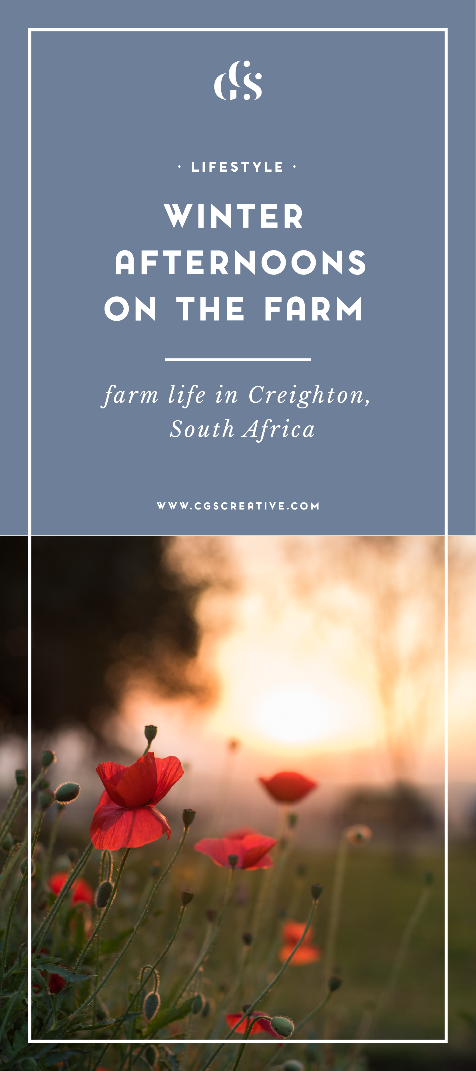 Winter Afternoons on the Farm Life in Creighton South Africa CGScreative_Artboard 3.png
