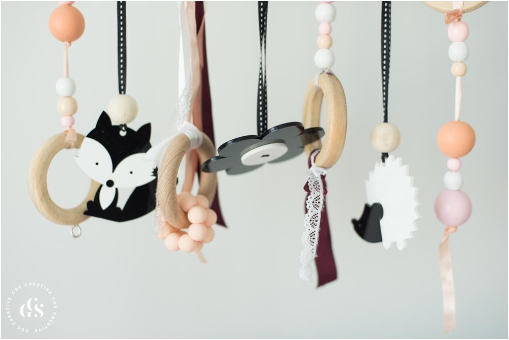 Little Interiors High Contrast Dangle Toys for Newborn Photos by Roxy Hutton of CGScreative & CityGirlSearching (19 of 20).jpg