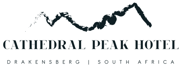 NEW-cathedralpeakhotel_logo_blue.png