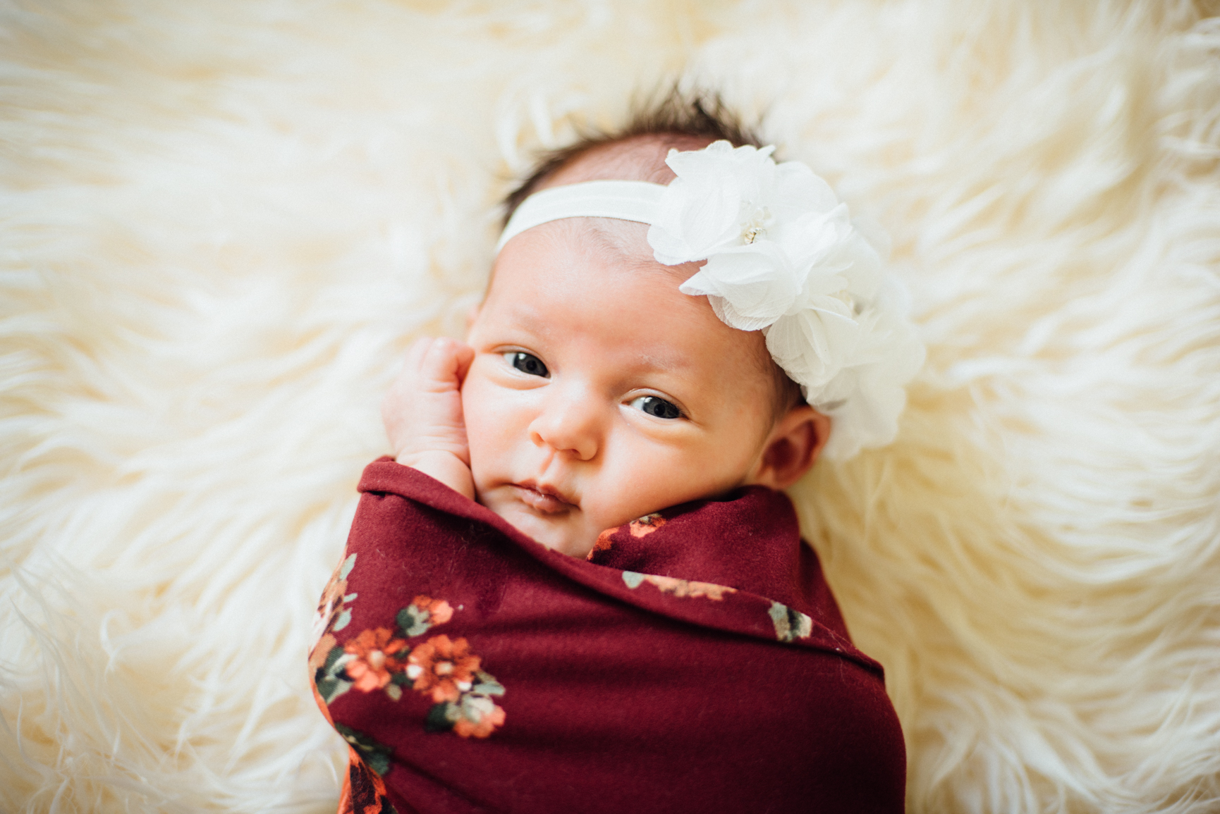 Everly Rose Newborn Photos by Roxy Hutton of CGScreative & CityGirlSearching (1 of 1).jpg