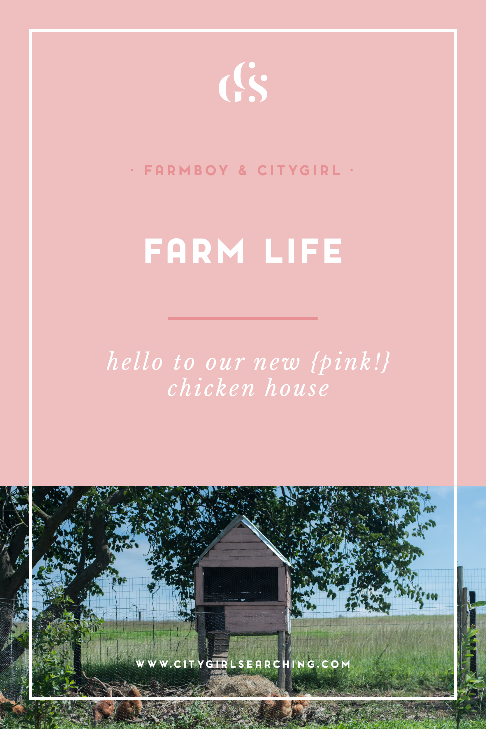 Farmboy CityGirl Pink Chicken House DIY-01.png