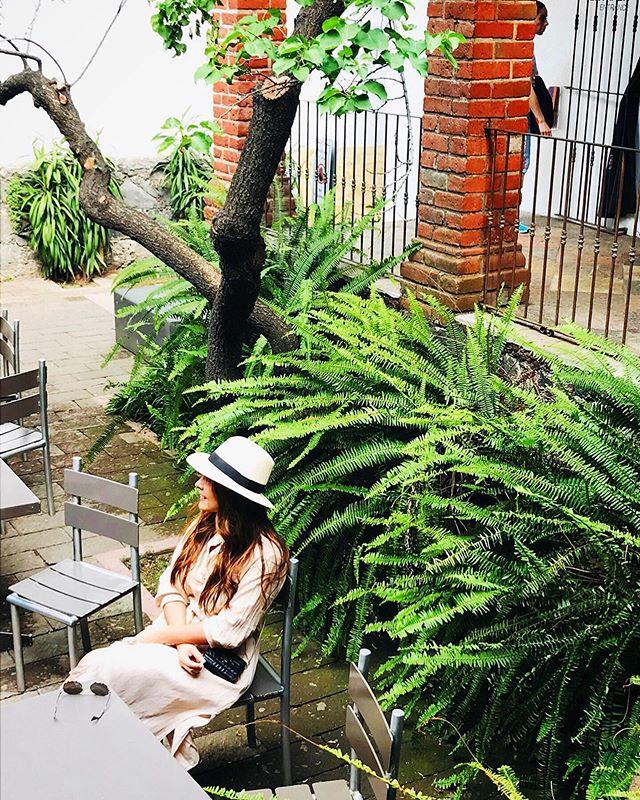 """Pies pa' que los quiero si tengo alas pa' volar"" - Frida . . . #frida #fridakahlo #lacasaazul #museofridakahlo #cdmx #mexicocity #mexico #museum #garden #architecture #design #art #fridakahloquotes #photooftheday #reportista"