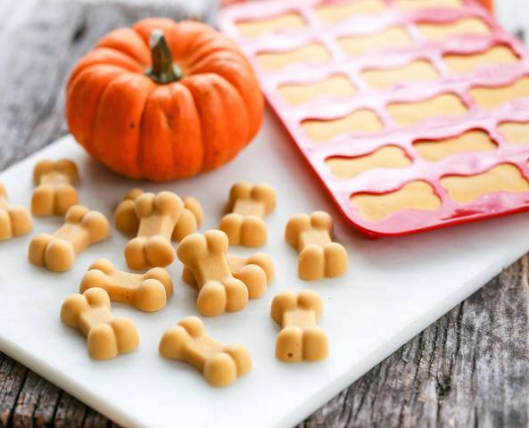 Make the most of the fall season & make some treat for your pets!  (be sure to double check ingredients & ask vet if you have any questions!