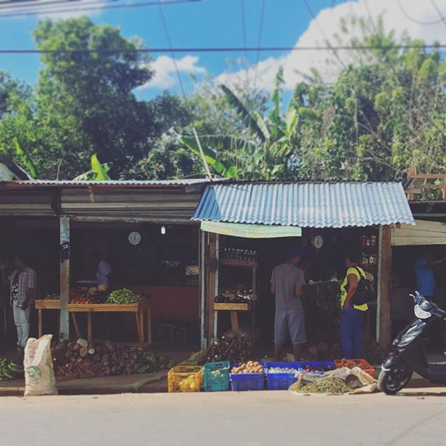 Shopping for sancocho ingredients (a comfort soup native to the island) at a Yamasa market. As heir to my parents farm, I am realizing that my ideas of balance and space are not sustainable here. The cultural expectations of feeding family, relatives, workers and whoever joins is very demanding. . But the connections we make over food and dominoes only enrich us in unexpected ways and expand. That is what food can do. Instead of ordering food for convenience and profit, it can be an event that brings people together and benefits the health of all. . There are other ways to live and eat. . #weyaya #yaya #sancocho #market #afrocarribbean #instagood #cooking #food #eats #afrolatina #latina #dominicanrepublic #market