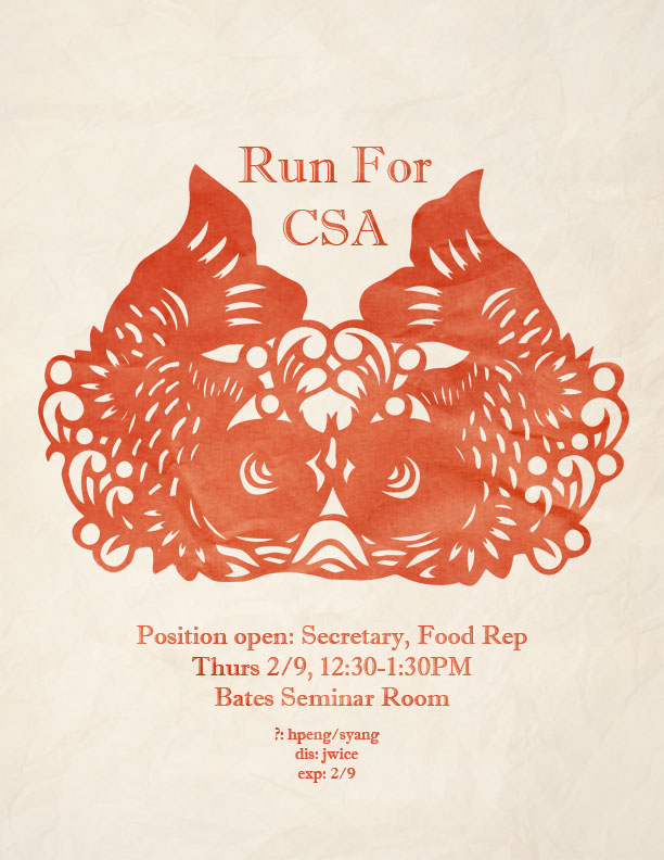 CSA election.jpg