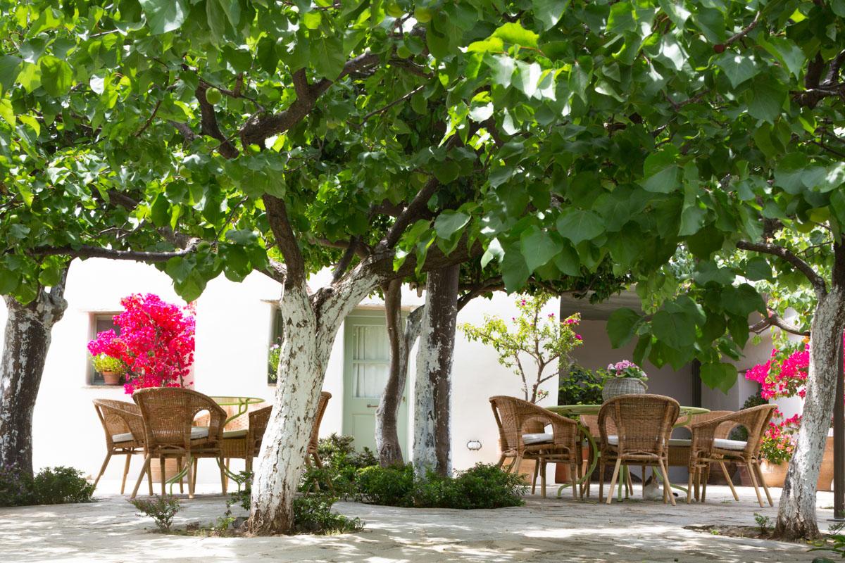 Ktima Lemonies Andros Island