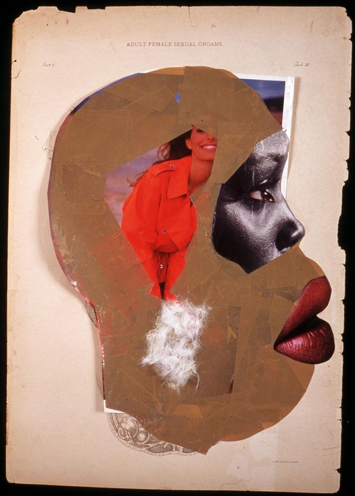33-wangechi-mutu-female-sexual-organs.jpg