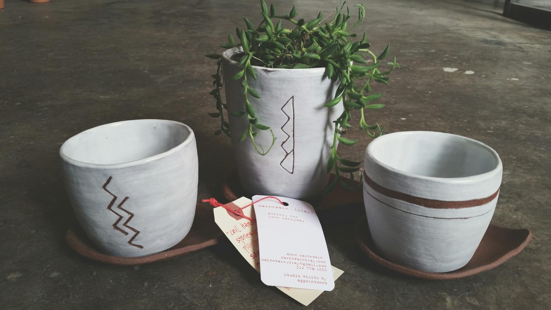 the plant shoppe, okc