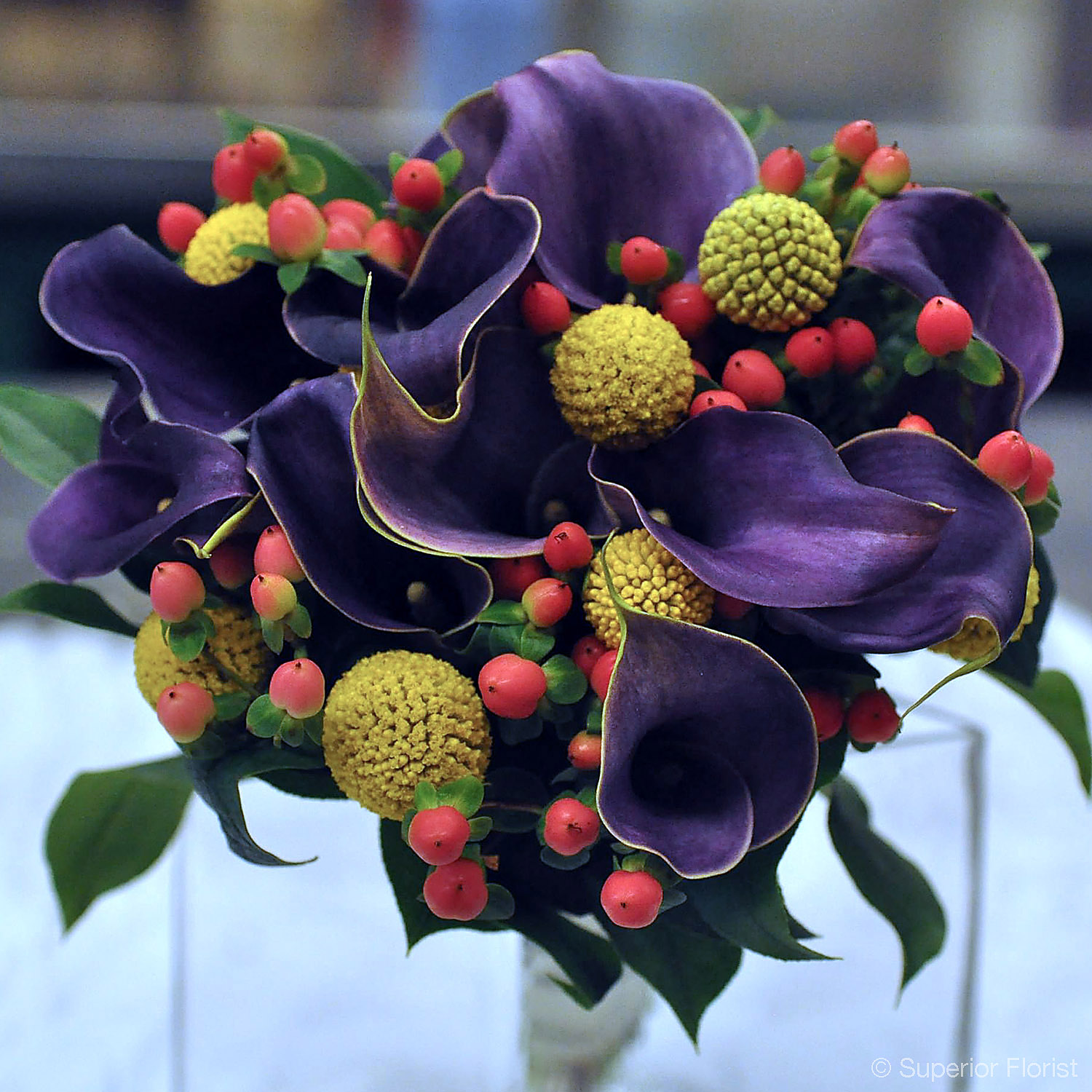 Superior Florist – Weddings – Personal Flowers: Hand tied bouquet of purple Callas, Hypericum and Craspedia.