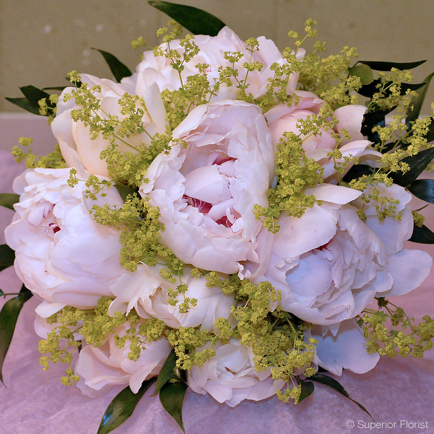 Superior Florist – Weddings – Personal Flowers: Hand tied bouquet of Festiva Maxima Peonies, lady's mantle, Italian Ruscus.