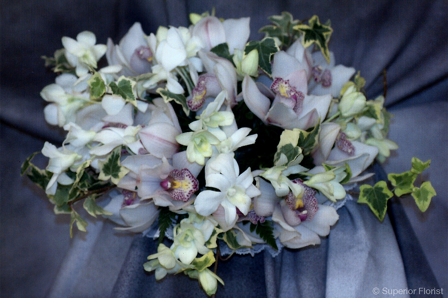 Superior Florist – Weddings – Personal Flowers: Hand tied bouquet of Cymbidiums, Dendrobium and ivy.
