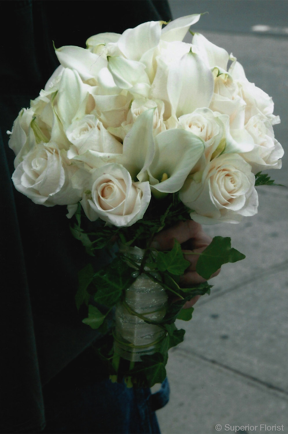 Superior Florist – Weddings – Personal Flowers: Hand tied bouquet of ivory roses, mini Callas and ivy.