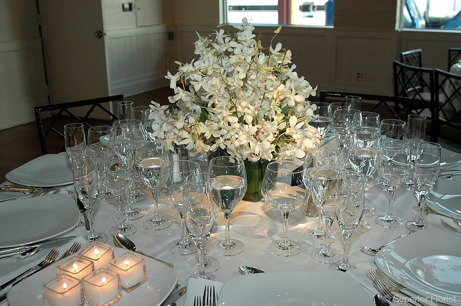 Superior Florist – Centerpieces:  Dinner table centerpiece of white Dendrobium orchids in a glass cube vase. Inside of vase lined with leaf wrap.