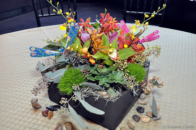 Superior Florist – Centerpieces:  Garden box centerpiece of succulents, orchids and paper butterflies.