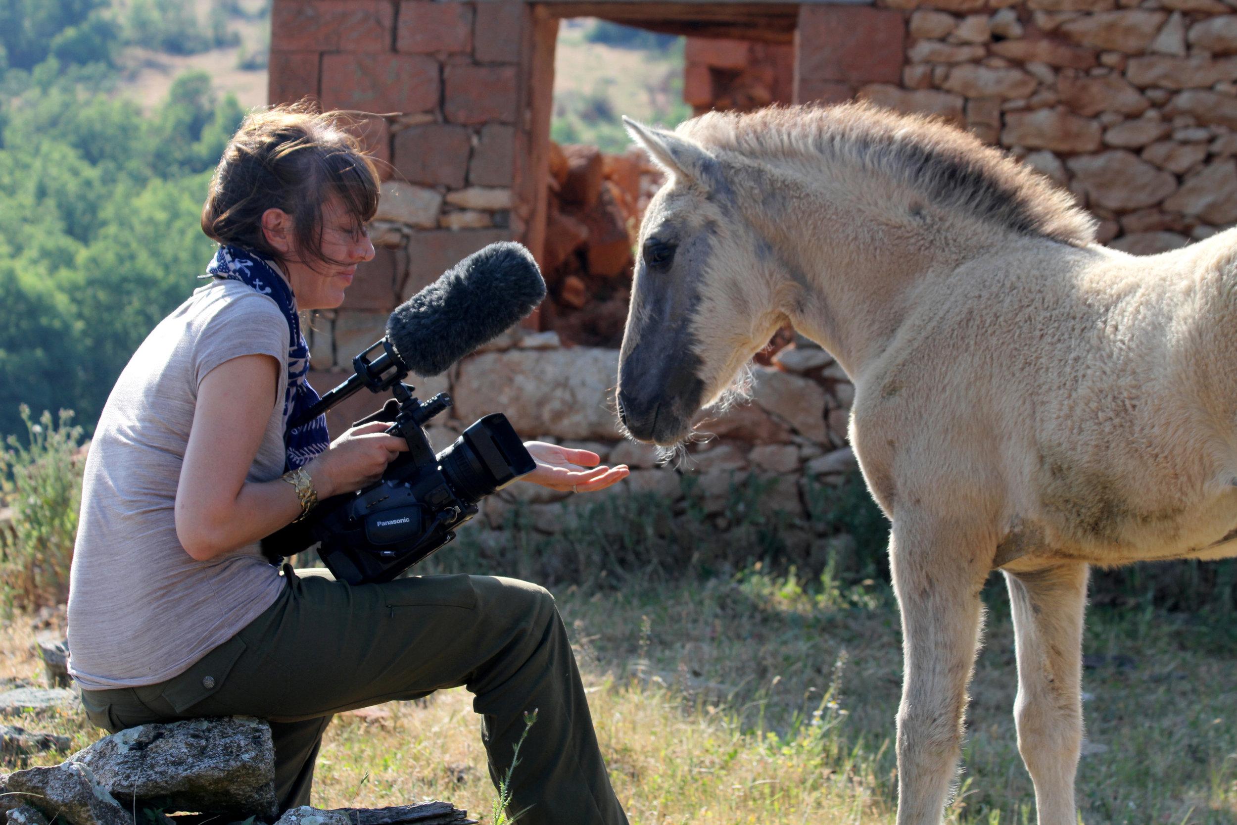 """Filming """"Tarpan: Repainting an Ancient Picture"""" in Bulgaria"""
