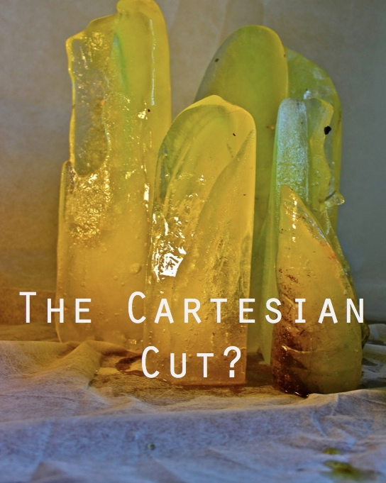 """The Cartesian Cut? - Group ExhibitionThe Cartesian Cut? exhibition (curator, Govier)interrogated the boundary of the body. The title of the exhibition related to the philosopher René Descartes (1596―1650) who made a clear distinction between the mind and body. Contemporary philosopher Karen Barad problematised his boundary, calling it the 'Cartesian cut' (2003: 815). Contra-Descartes she offered an understanding of entities not as unique beings but 'phenomena' in constant 'intra-action' (2003: 815).Jane Bennett, in her seminal piece 'Vibrant Matter', reminds us of the colonies of bacteria that inhabit the crook of the human elbow and how they moisturise the skin and help with the movement of the arm (2010: 112); Bennett remarks: """"the its outnumber the mes [!]"""". Inspired by this remark, this exhibition brought together artists working with ideas about the 'porosity' of body boundaries.Image: 'The Cartesian Cut?',Energy Drink Ice Sculpture, 2015.Fringe Arts Bath Cartesian Cut? Exhibition.27.5.16-12.6.16."""