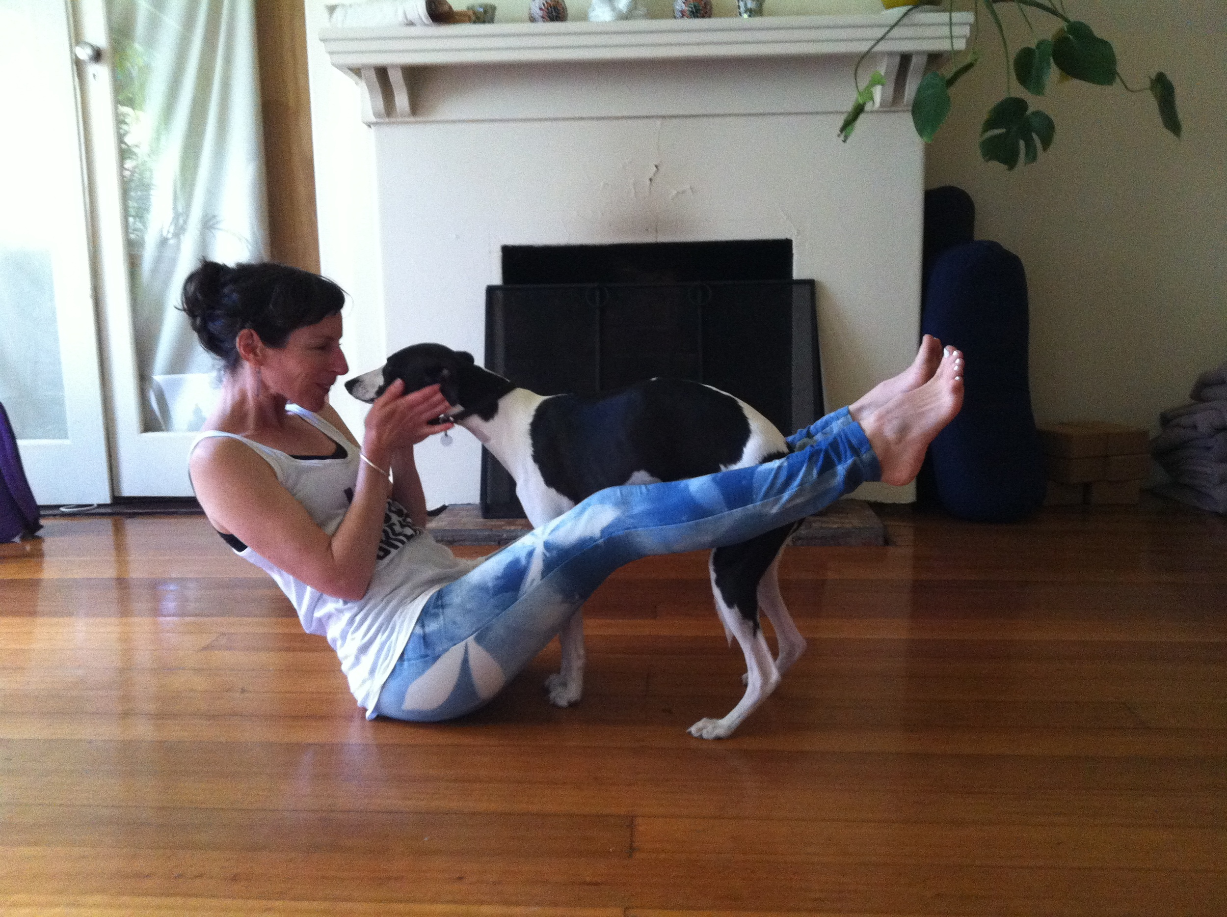 Navasana with a friendly whippet
