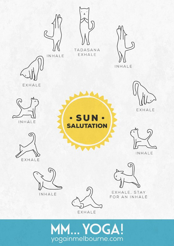 mmyoga kitty sun salute poster free download