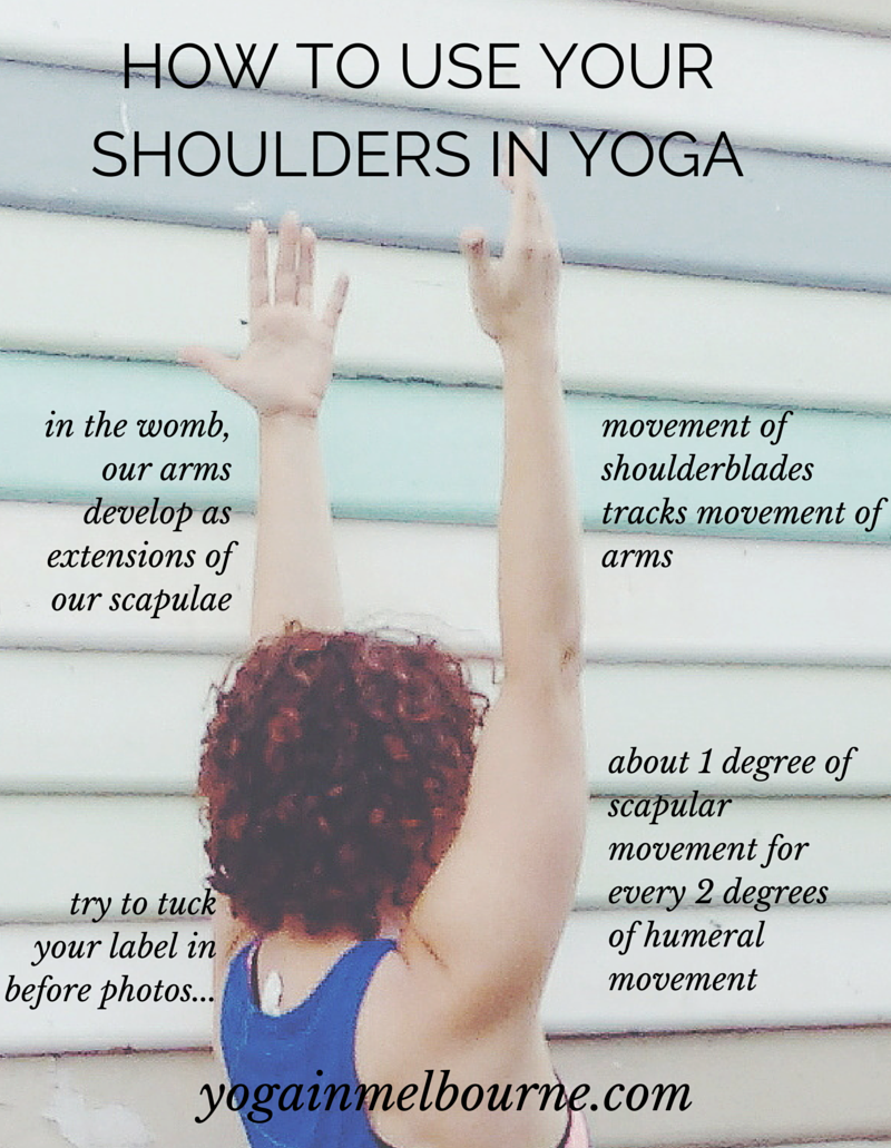 How to use your shoulders in yoga