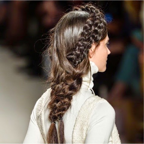 fish braid 4.jpg