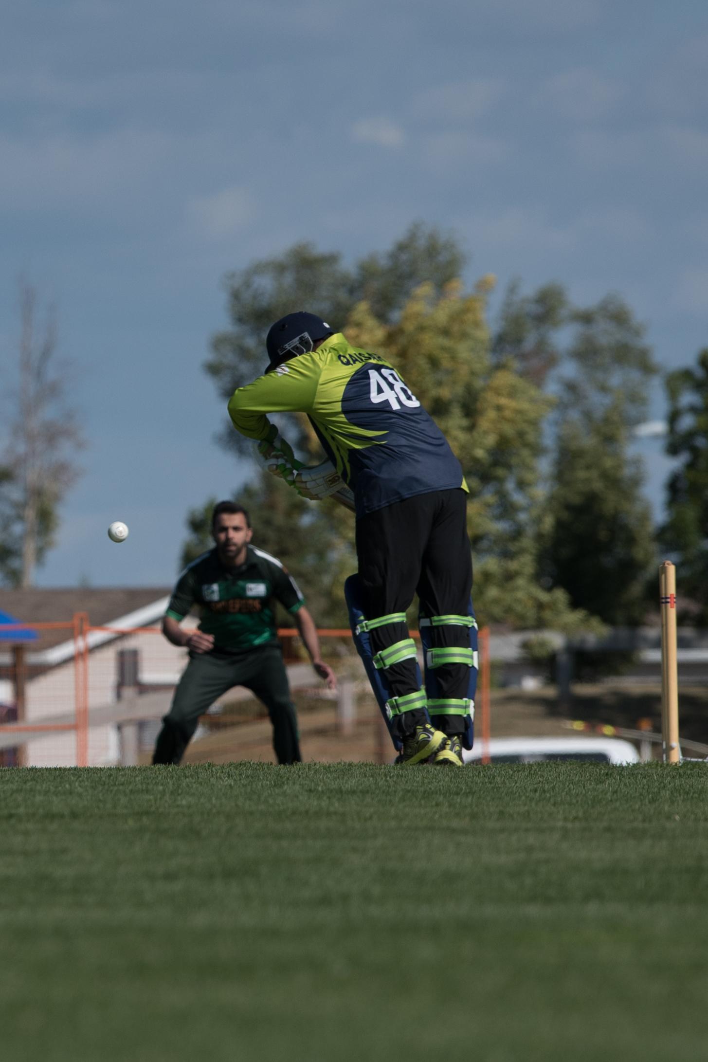 Cricket-0379.jpg