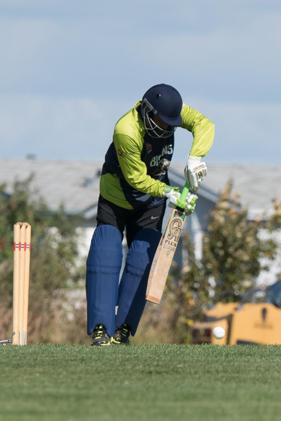 Cricket-0404.jpg