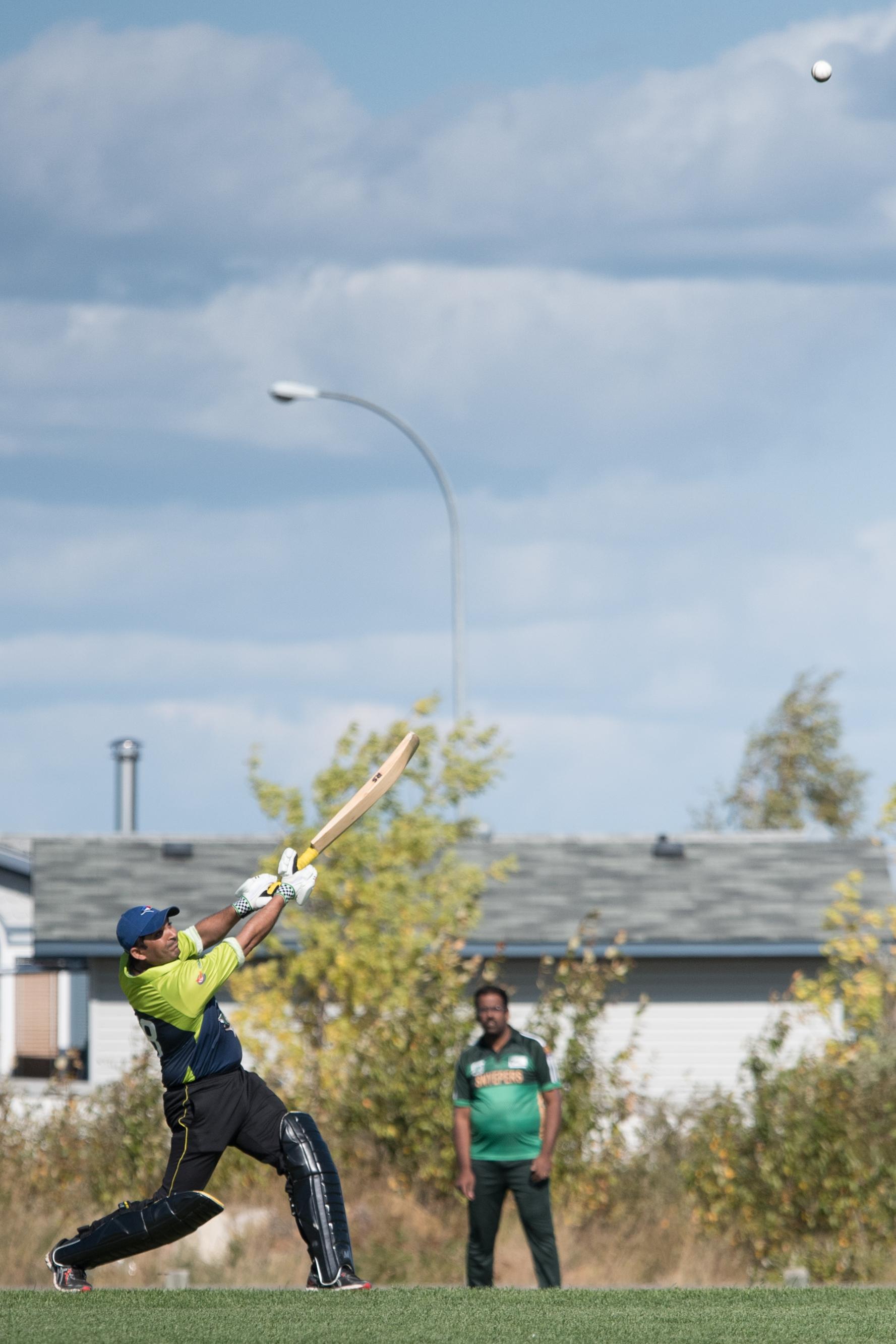 Cricket-0453.jpg