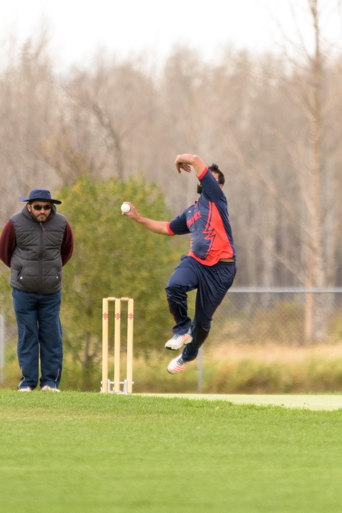 Cricket-0657.jpg