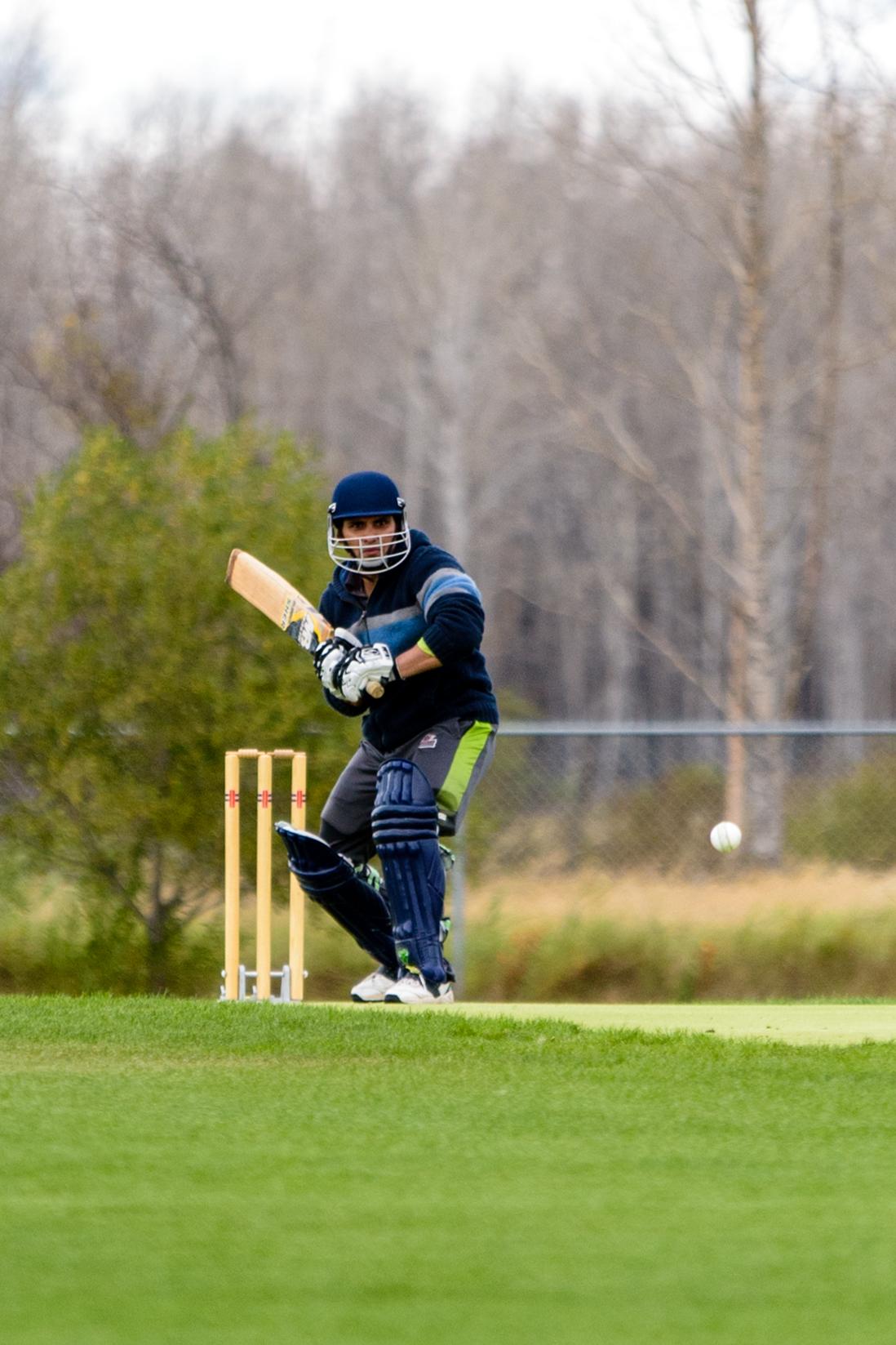Cricket-0692.jpg