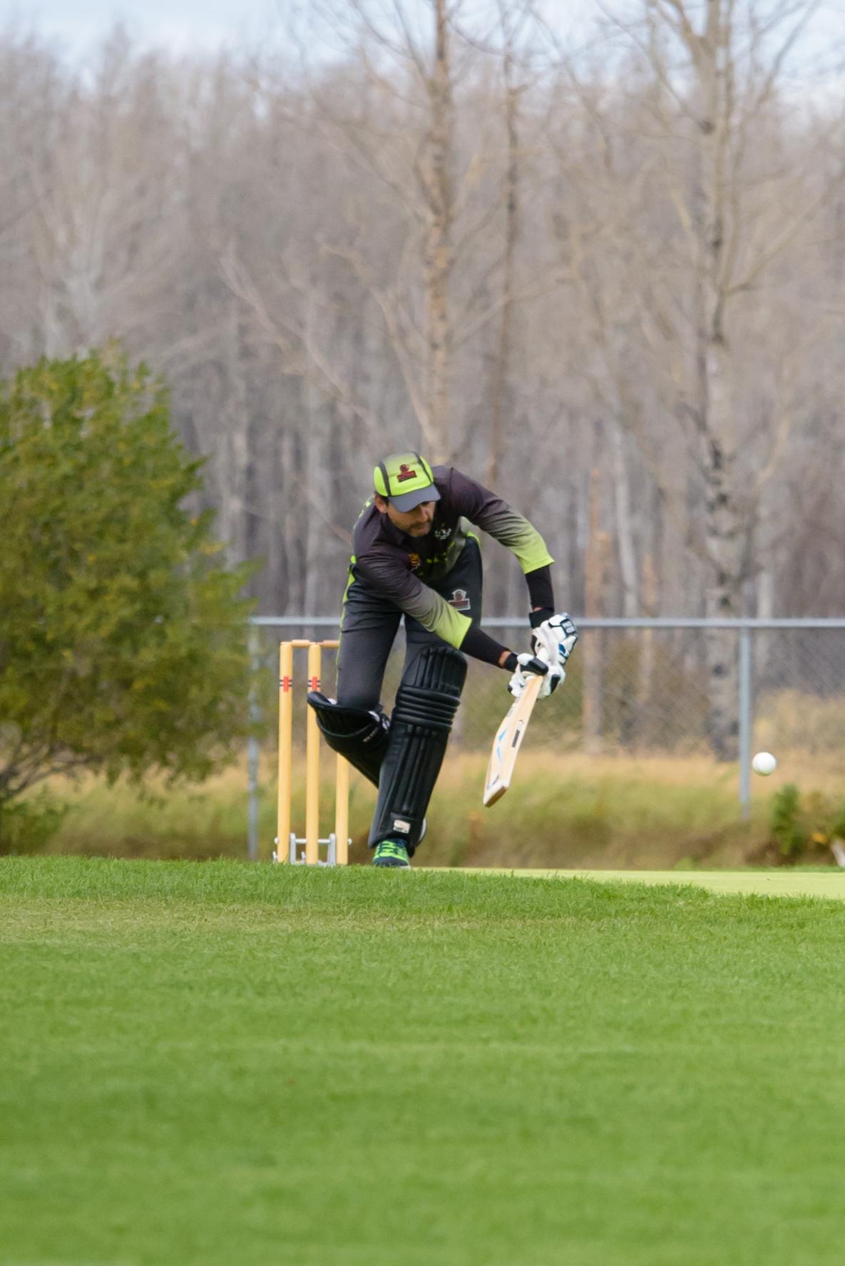 Cricket-0914.jpg