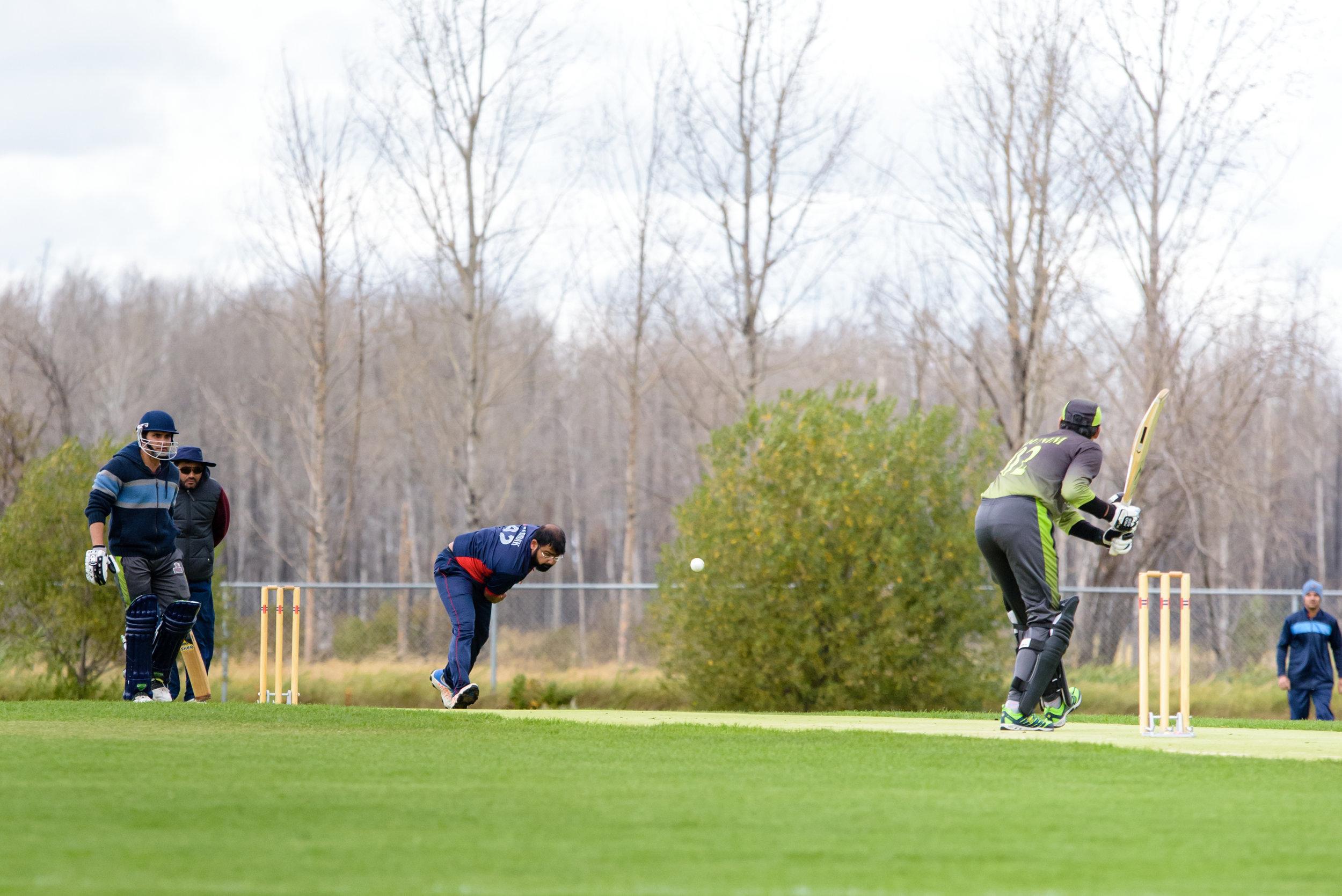 Cricket-0883.jpg