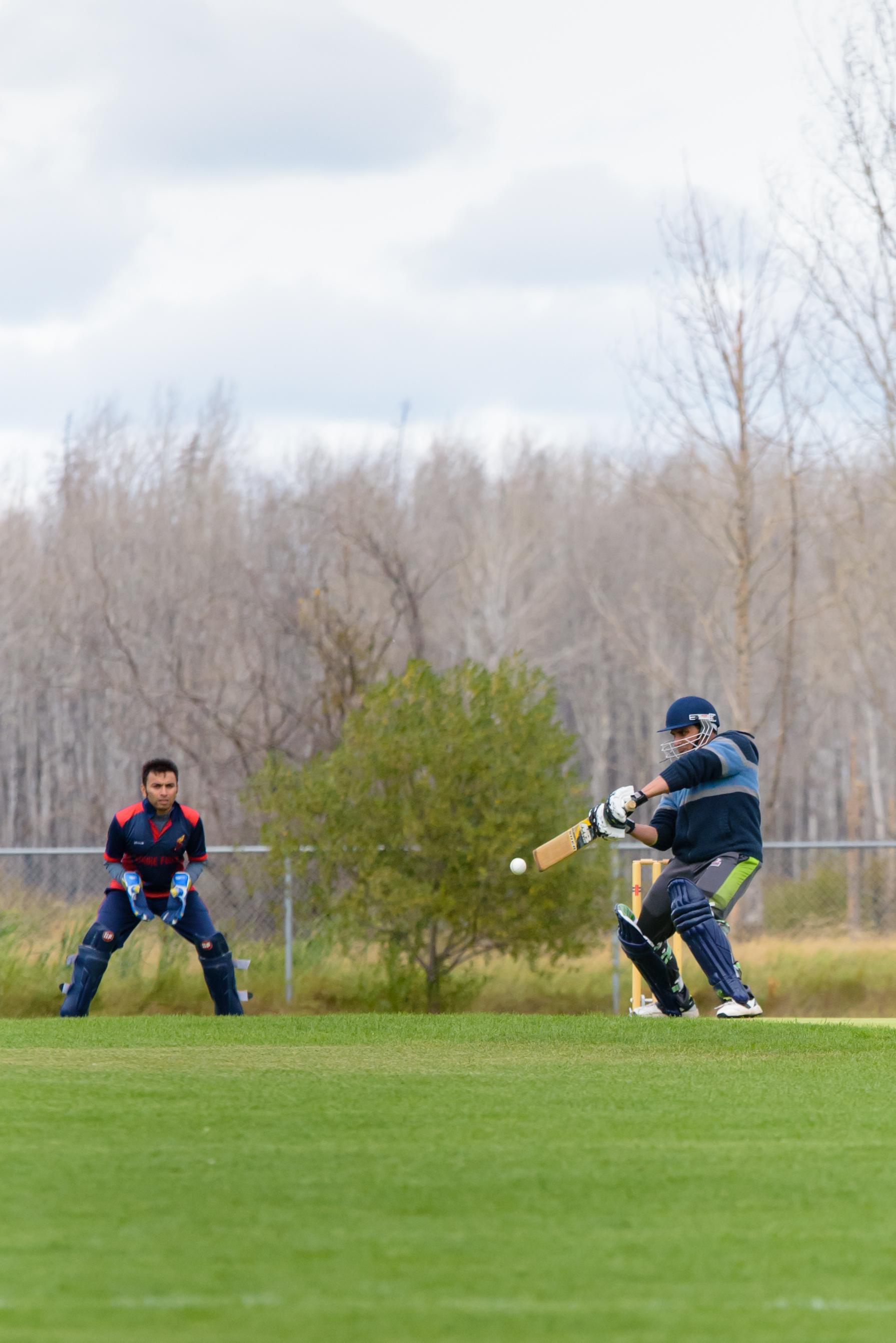 Cricket-0926.jpg