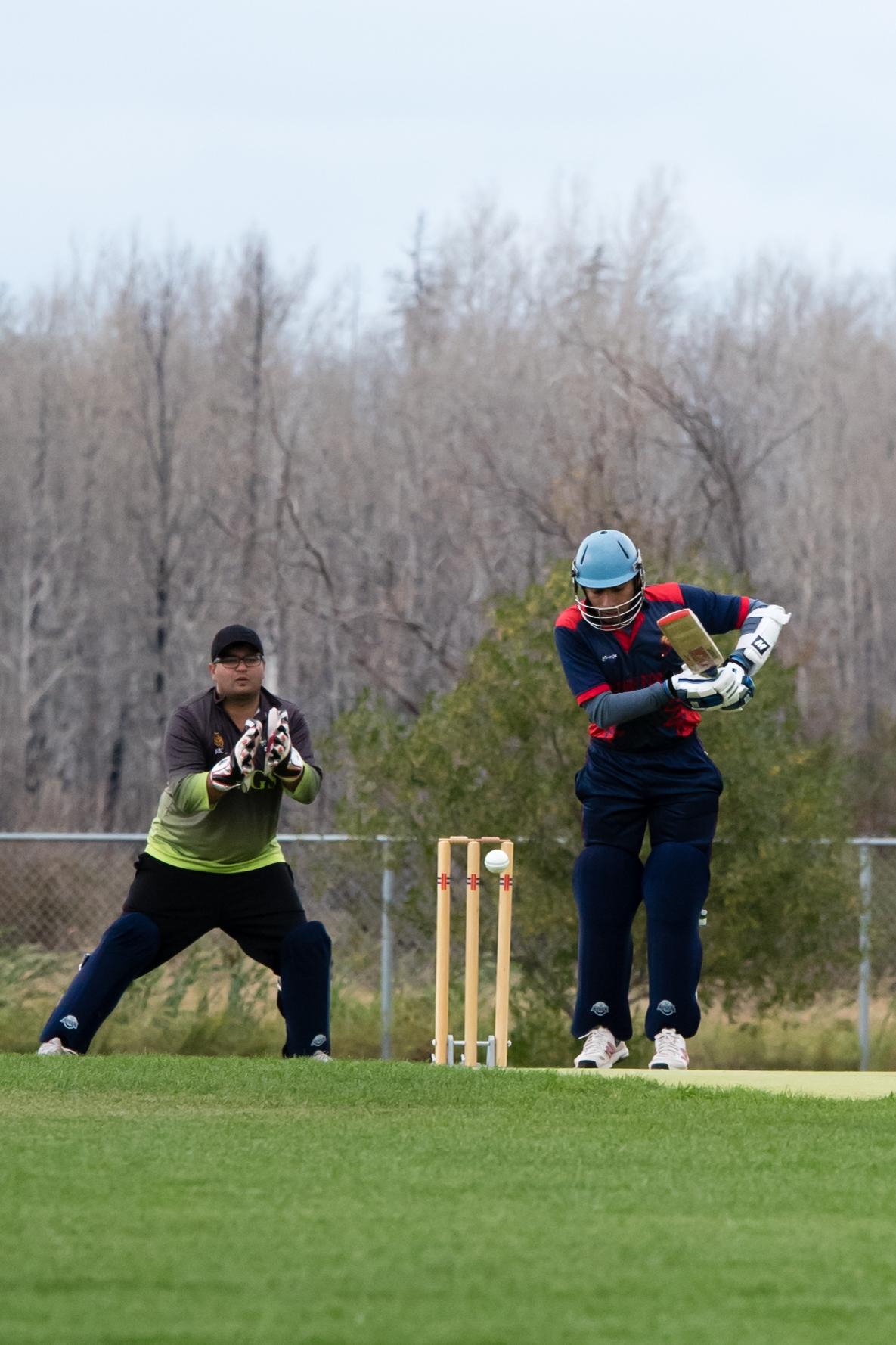 Cricket-1545.jpg