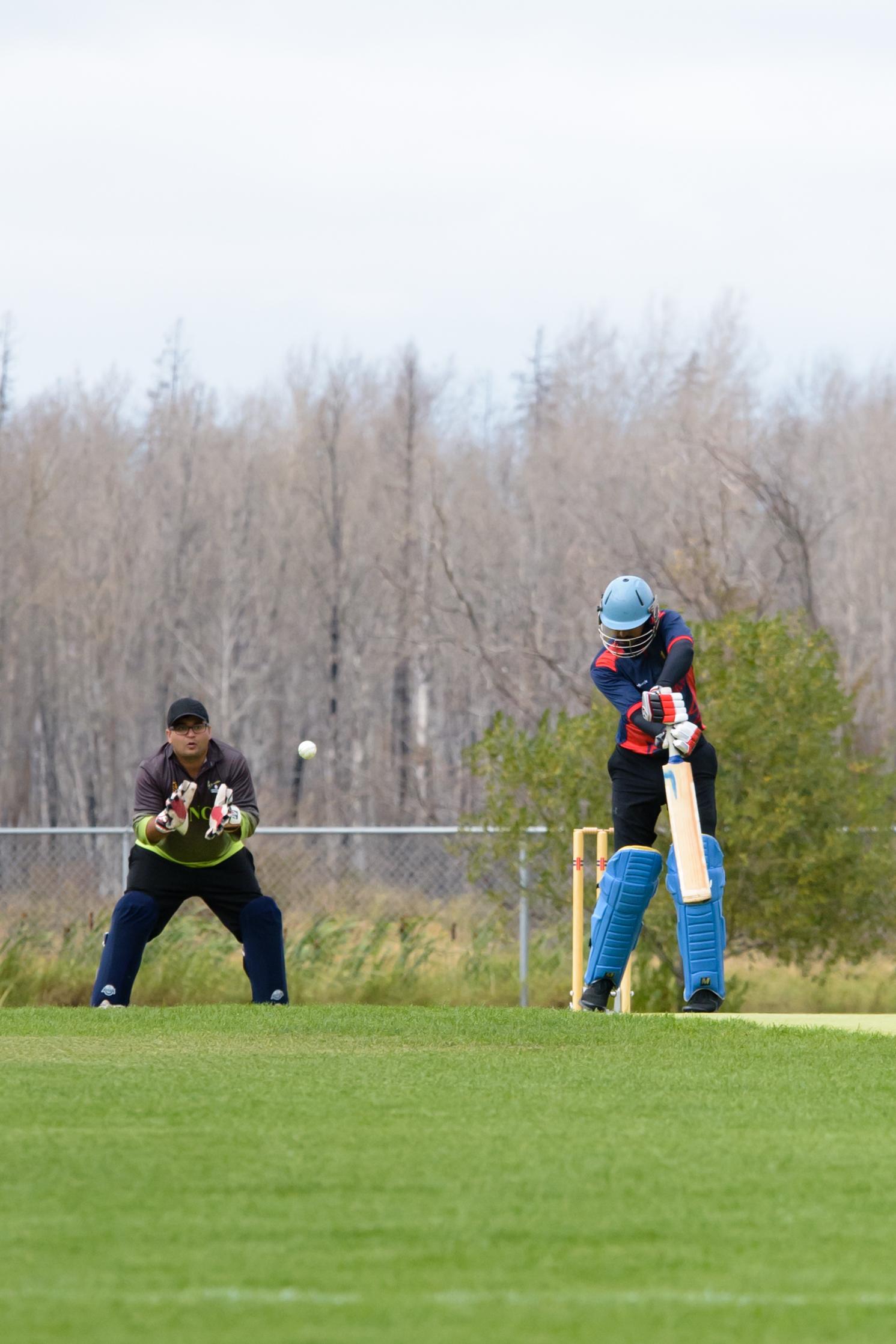 Cricket-1626.jpg