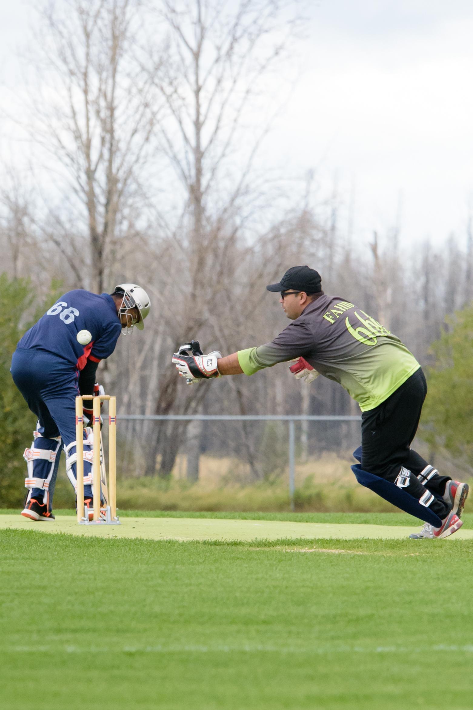 Cricket-1992.jpg