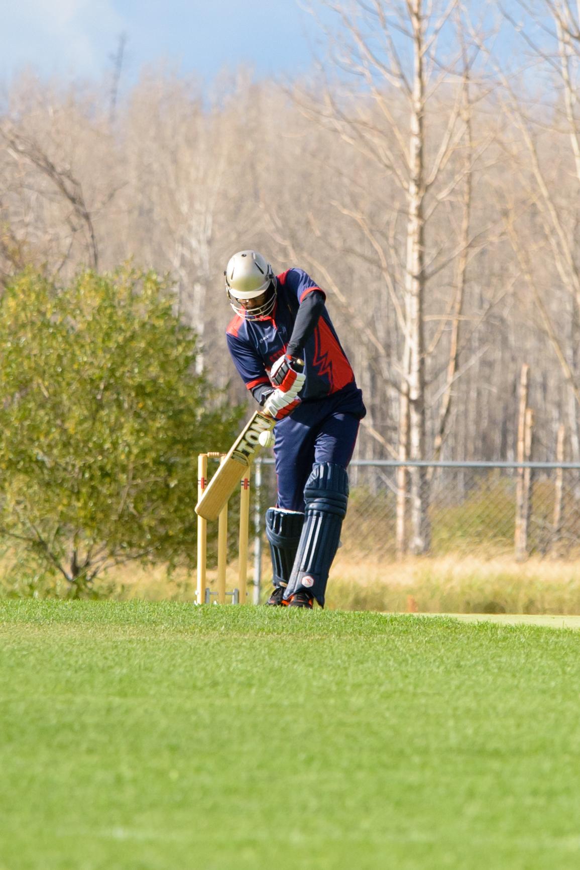 Cricket-2085.jpg